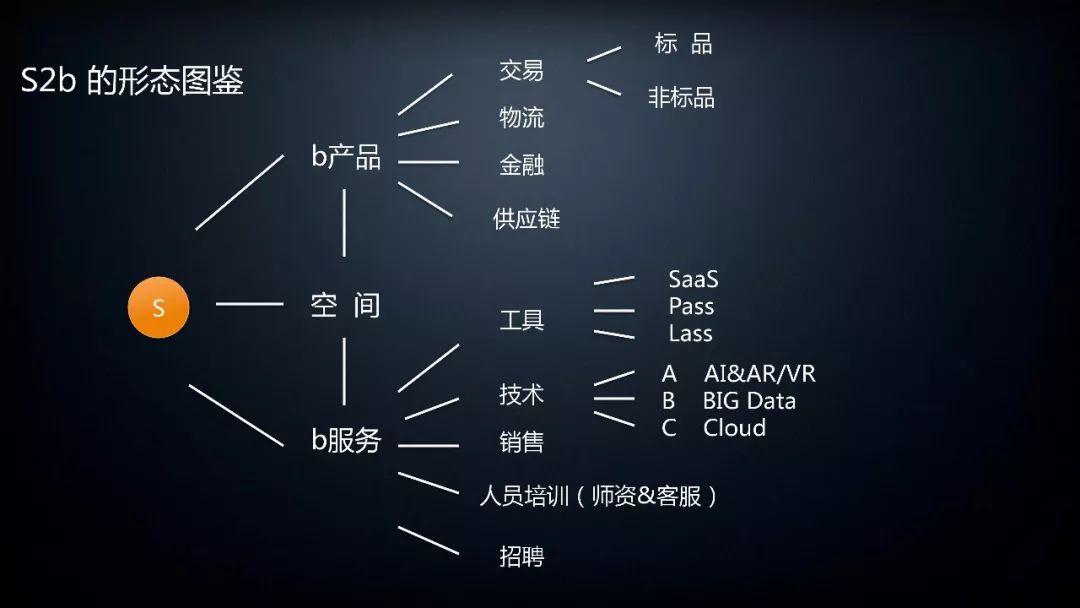 S2b的形态图鉴